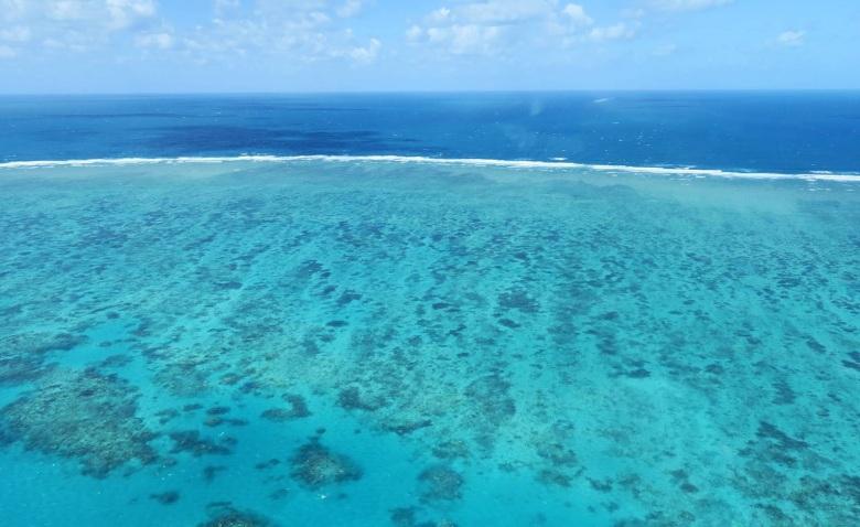 澳洲東北面開恩茲的大堡礁.JPG