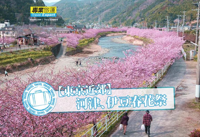 【東京近郊】河津、伊豆春花祭